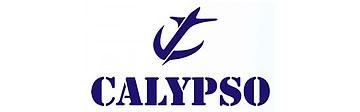 Часы Calypso